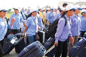 Hơn 57.000 lao động Việt Nam đi làm việc ở nước ngoài nửa đầu năm 2017