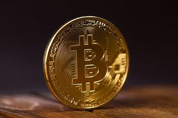 Bitcoin có thể đạt 4.000 USD-5.000 USD trong vài tháng tới