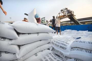 Việt Nam sẽ dự thầu bán 250.000 tấn gạo cho Philippines