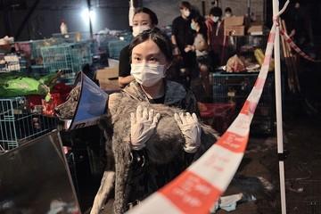 Trung Quốc: Người nuôi chó tăng nhưng thị trường thịt chó vẫn phát triển