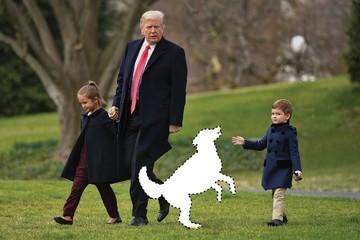 Nhà Trắng còn trống một vị trí... Đệ nhất thú cưng