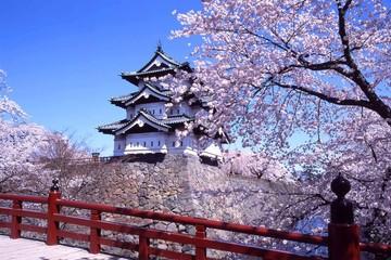 Nhật Bản cam kết hỗ trợ 1 tỷ USD thúc đẩy các mục tiêu phát triển