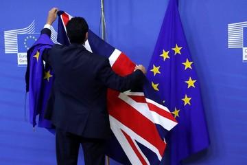 Tác giả điều 50 kêu gọi dừng Brexit vì