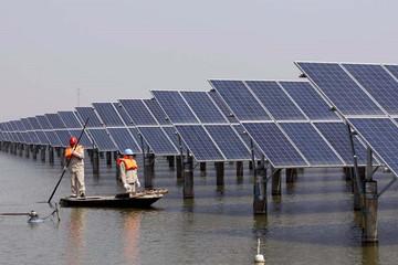 Trung Quốc đang vượt Mỹ về năng lượng tái tạo