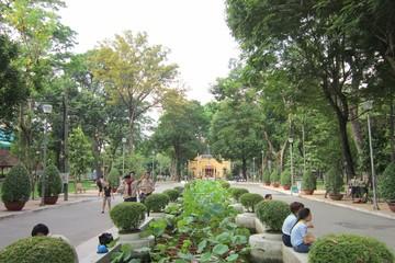 Chỉ tiêu diện tích cây xanh Hà Nội và TP HCM chỉ đạt 1/10 tiêu chuẩn thế giới
