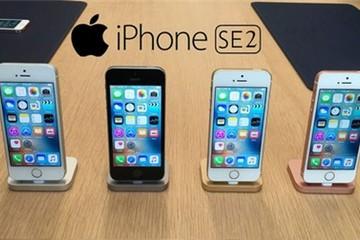 Apple ra mắt iPhone SE2 tháng 8, iPhone 8 vào tháng 10