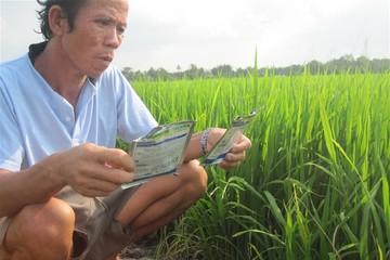 Lộc Trời và Siam City Cement cùng xử lý chất thải nông nghiệp ở Việt Nam