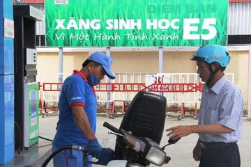 Thủ tướng yêu cầu xem xét chi phí sản xuất xăng sinh học