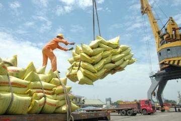 Bangladesh mời thầu mua 50.000 tấn gạo đồ non-basmati
