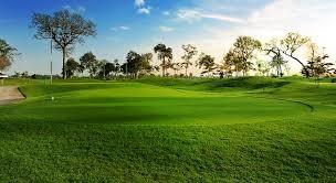 Cấm lấy đất trồng lúa 2 vụ làm sân golf