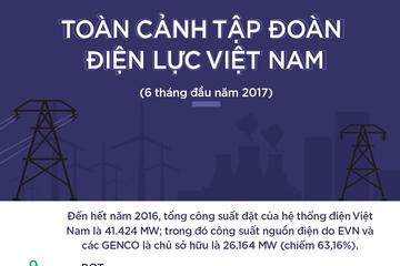 [Infographic] Toàn cảnh Tập đoàn Điện lực Việt Nam