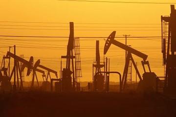 Giá dầu thô tăng trở lại