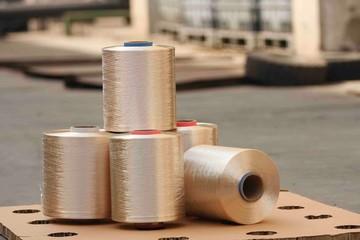 Ấn Độ điều tra chống phá giá với sợi nylon nhập khẩu từ Việt Nam