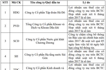 PVD, SII, SCD, HDG, TDC và TV1 không được giao dịch ký quỹ