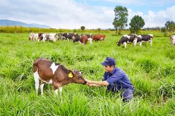 Triển vọng tươi sáng của thị trường sữa Việt Nam