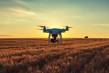 Nông dân thời công nghệ: Mỹ dùng AI thay người chăm cây