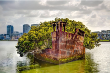 Abandoned Wrecks: Những đống đổ nát bị lãng quên