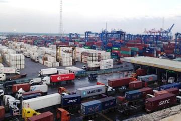 Bán đấu giá 82 container hàng vô chủ ở cảng Cát Lái