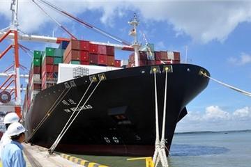 Cảng ngàn tỉ Cái Mép - Thị Vải 'đói' hàng vì tàu chỉ thích về TP HCM