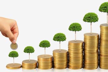 Quyết định nâng vốn gấp ba, GKM đang hướng đến những gì?