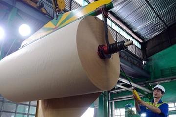 Trung Quốc khát giấy, gom sạch giấy cuộn từ Việt Nam