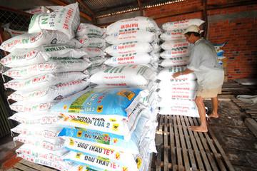 Phân bón tăng giá mạnh đầu vụ đông xuân