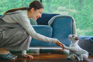 Sony ra mắt chó robot biết chụp ảnh