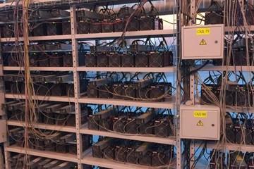 Đến thăm nhà máy đào tiền điện tử hạng