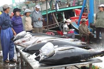 Bộ Nông nghiệp nêu giải pháp giúp hải sản Việt thoát