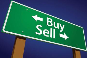 Dragon Capital và KT Zmico Securities lần lượt mua vào CTD và MWG
