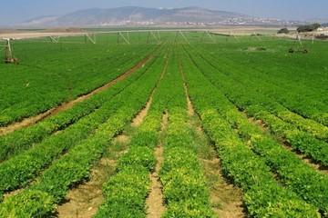 Pan Farm chào mua 30,5% vốn FMC với giá 23.000 đồng/cp