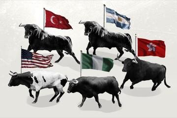 TTCK toàn cầu: Những 'bò tót' mạnh nhất 2017