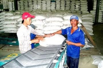 Bỏ kho gạo và không còn đăng ký hợp đồng với VFA