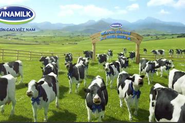 Vừa gom xong 2 triệu cp VNM, F&N Dairy muốn mua thêm 14,5 triệu cp