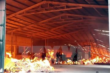 Cháy kho chứa 34.000 tấm pin Mặt Trời, thiệt hại hàng chục tỷ đồng