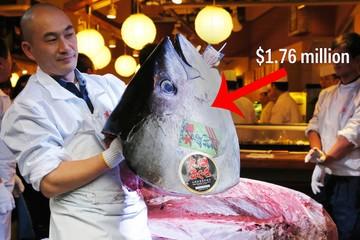 Chợ cá lớn nhất thế giới