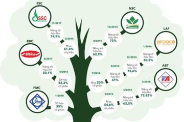 PAN Group - doanh nghiệp vừa sở hữu hơn 54% Thực phẩm Sao Ta đang nắm trong tay những gì?