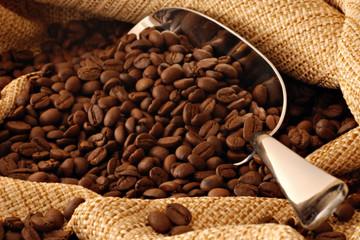 Giá cà phê chao đảo thất thường mấy ngày Tết