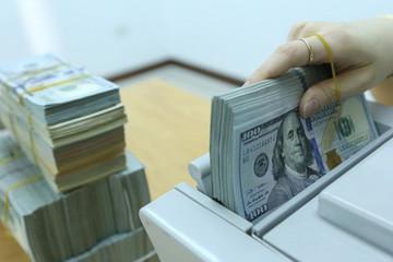 Tỷ giá USD/VND lên cao nhất một năm