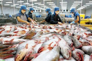 Việt Nam kiến nghị lên WTO việc Mỹ hạn chế nhập khẩu cá tra