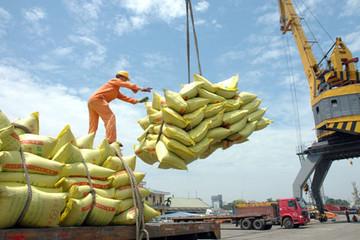 Giá gạo Việt đang cao hơn gạo Thái, XK nông sản thu về 6,1 tỷ USD