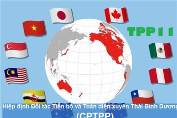 Việt Nam thời CPTPP