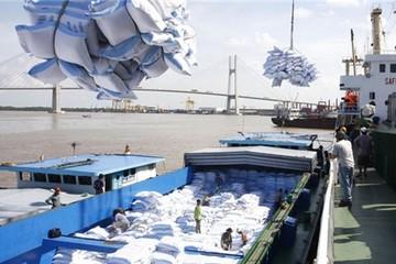 Phấn đấu xuất khẩu 6,5 triệu tấn gạo