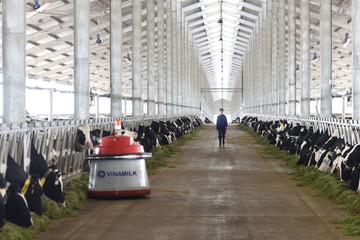 Vinamilk khánh thành trang trại bò sữa công nghệ cao 700 tỷ đồng tại Thanh Hóa
