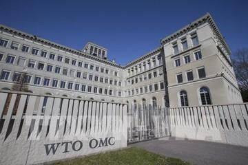 WTO: Chủ nghĩa bảo hộ thương mại sẽ hủy hoại thành quả tăng trưởng thương mại toàn cầu