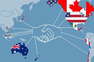 AmCham Việt Nam hoan nghênh việc Tổng thống Trump muốn quay lại TPP