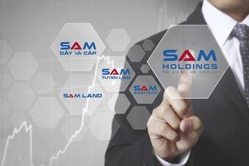 Nhìn lại các khoản đầu tư tài chính của SAM Holdings