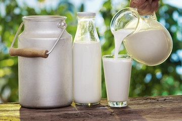 Sữa Việt giảm dần phụ thuộc vào nhập khẩu