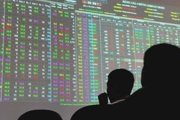 MBKE chính thức tăng vốn điều lệ lên 1.056 tỷ, bước vào sân chơi covered warrant