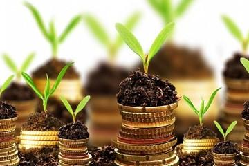 SSI Retail Research: 83% công ty niêm yết báo lãi, ngành ngân hàng chiếm 30% tổng lợi nhuận hai sàn